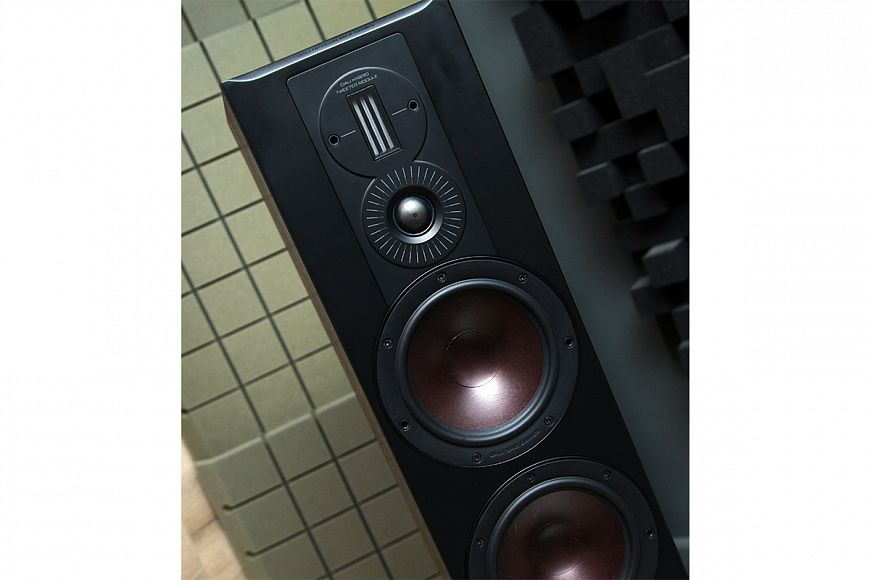 Floor-standing speakers DALI Opticon 6 mk2